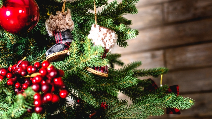 Three ways to experience some MAGIC thisChristmas